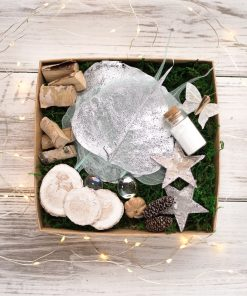 Winter Fairy Garden Kit brings a touch of winter magic to creative play.